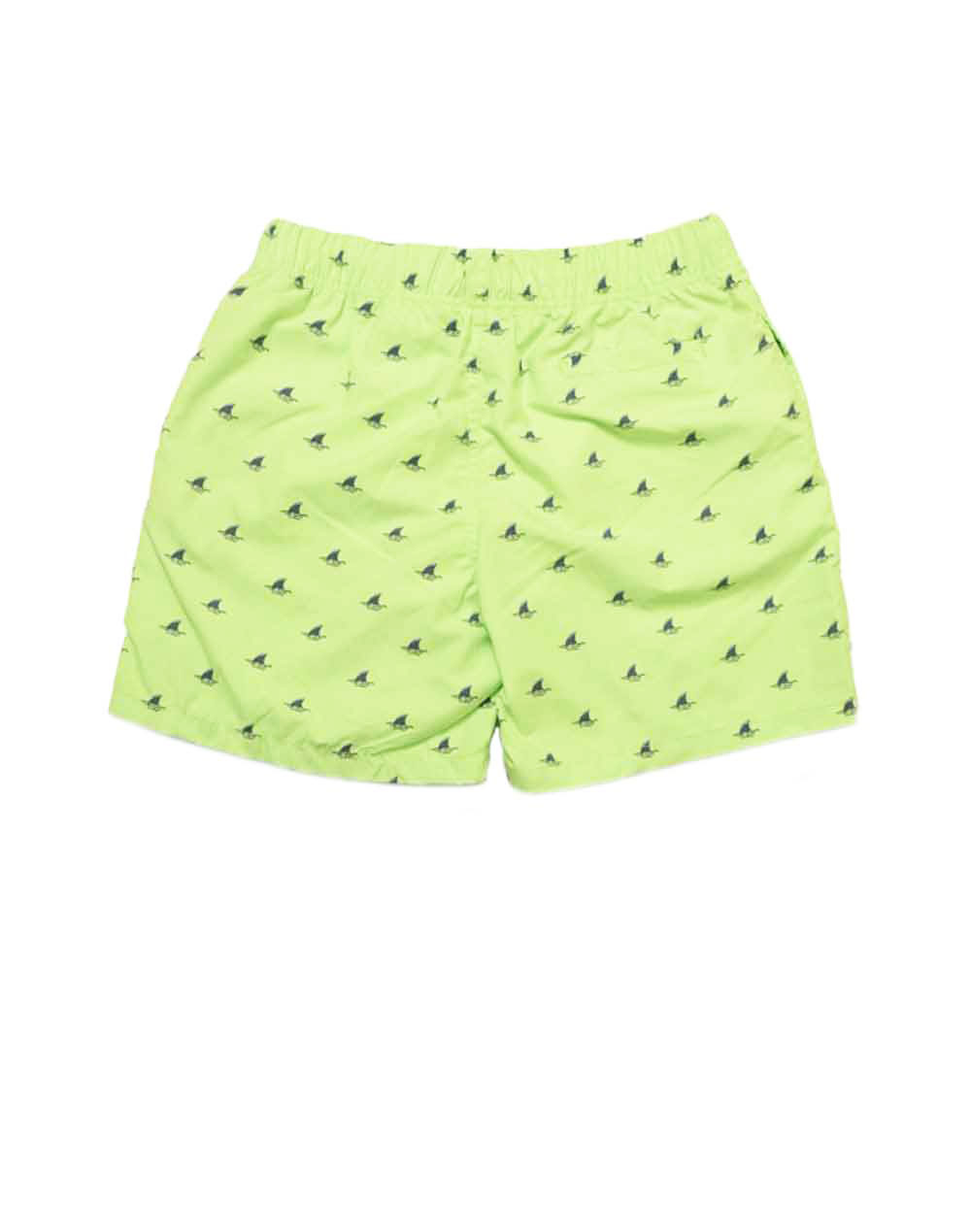 SHIWI SWIMWEAR 4172111068 LIME