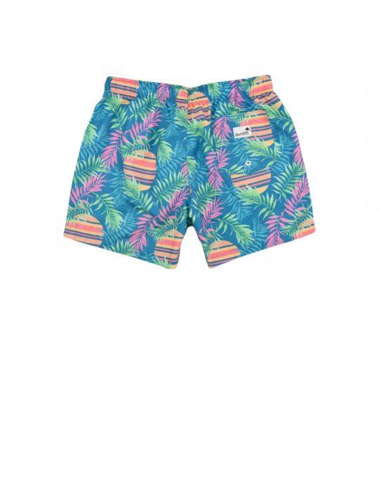 Boardies Rising Palm Swim Shorts (BS504M) Teal