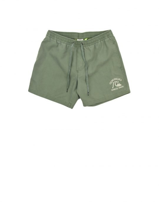 "Quiksilver Surfwash 15"" - Swim Shorts (EQYJV03692-GNB0) Laurel Wreath"